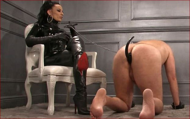 Mistress Nikita - Slave doggy at feet of strict lady [FULL HD 1080p]